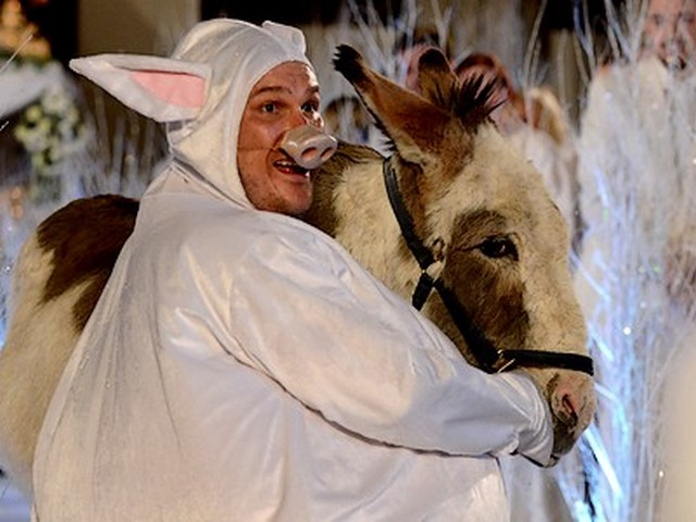 Nativity 3: Dude, Where's My Donkey?